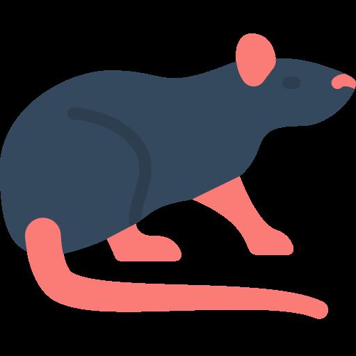 ico rat