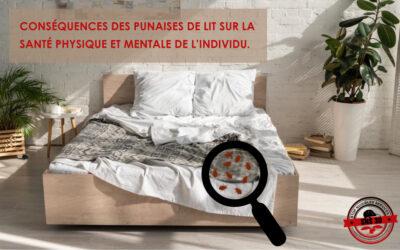 punaises de lit : quelles conséquences pour la santé physique et mentale ?